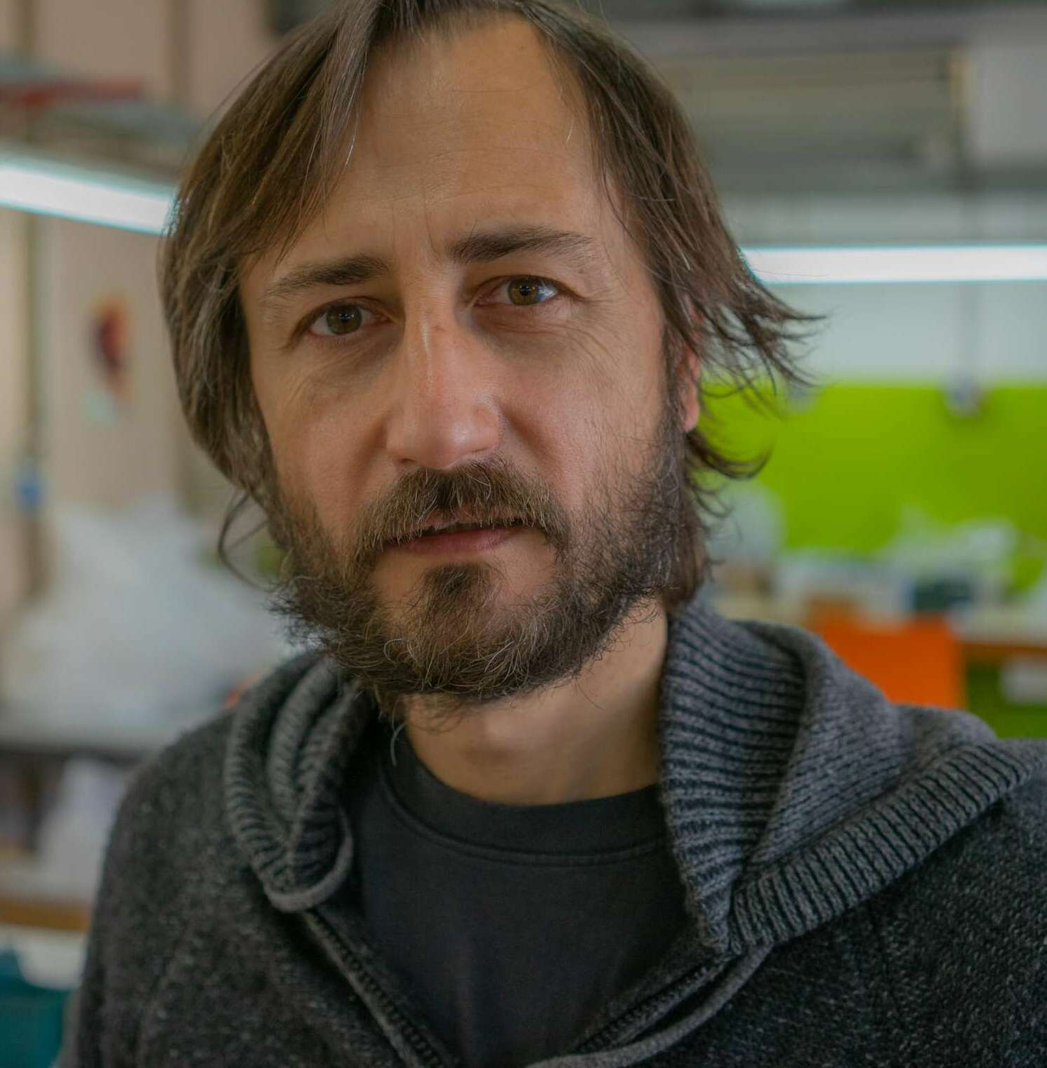 Fabrizio Borsari